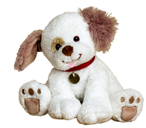 BUDDY - WHITE PUPPY