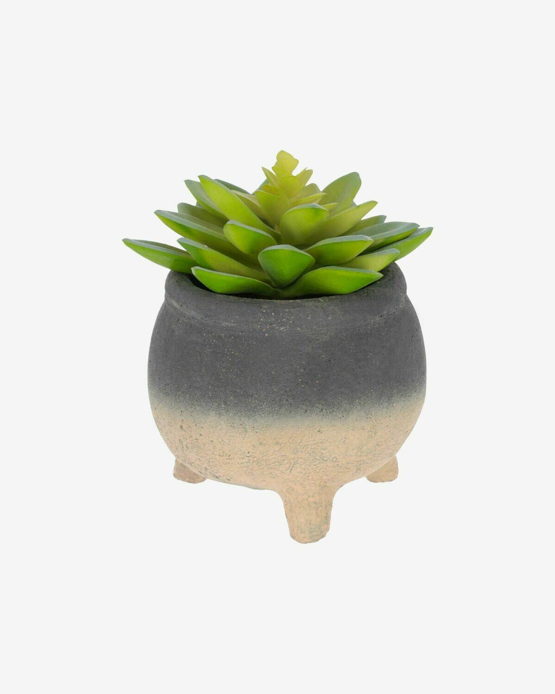 Planta artificial Sedum lucidum con maceta de cemento 14 cm