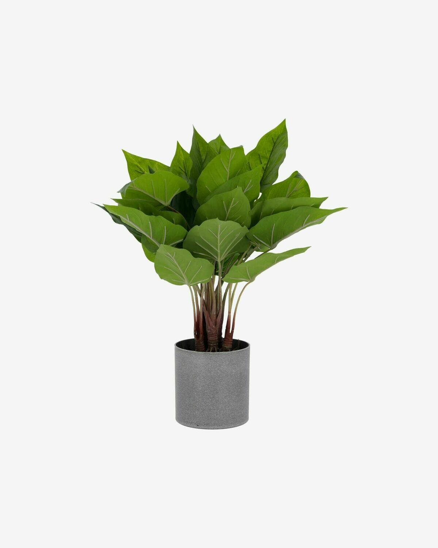Planta artificial Anthurium con maceta de cemento 50 cm