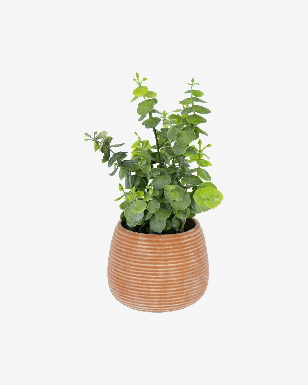 Planta artificial Eucalipto con maceta de cerámico marrón 25 cm