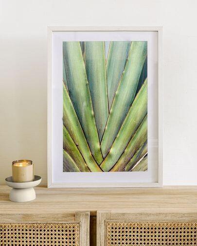 Cuadro Lyn aloe vera verde 50 x 70 cm