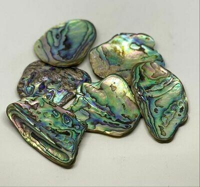 Paua Opaal (per stuk)