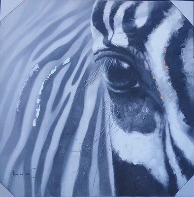 H11 (Zebra)