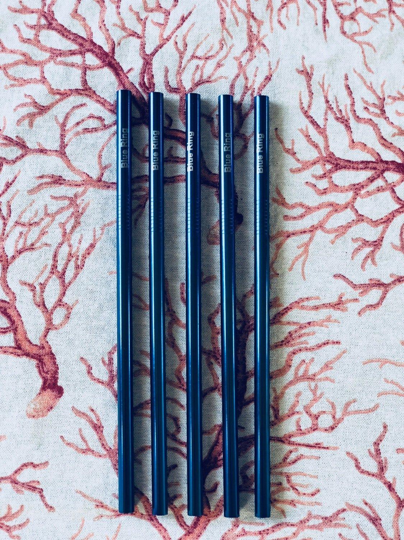 Metal straw (set of 5)