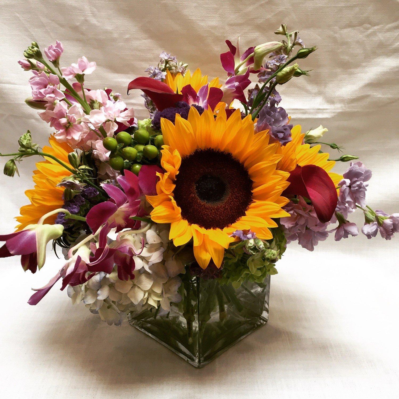 Sunflower Blast by Twigs Florist