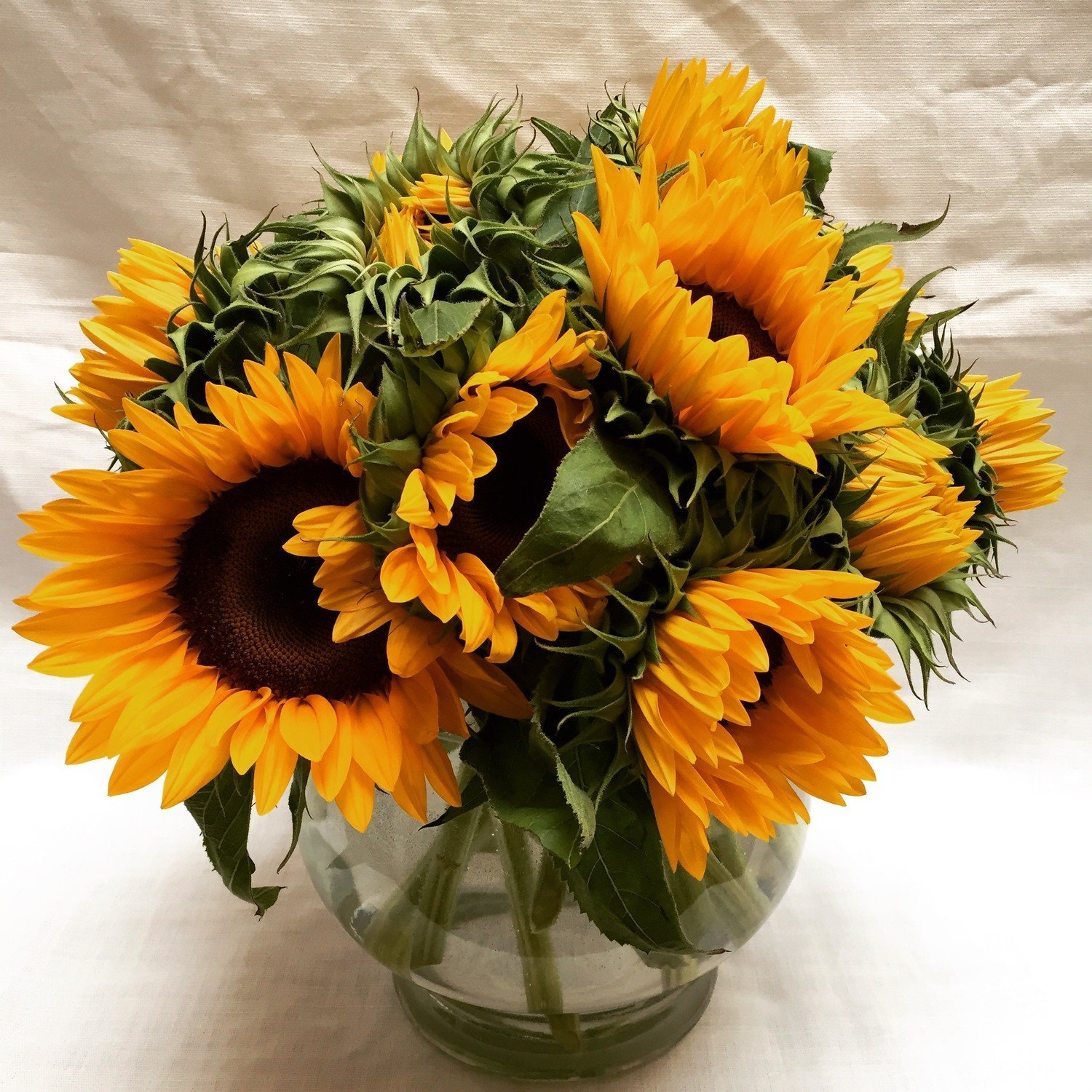 Super Sunflowers by Twigs Florist