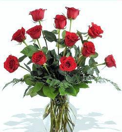 Classic Dozen Roses by Twigs Florist