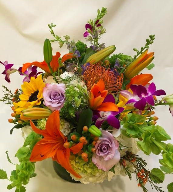 Wild Compact by Twigs Florist