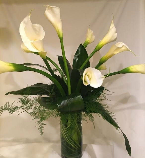 Calla Dream by Twigs Florist
