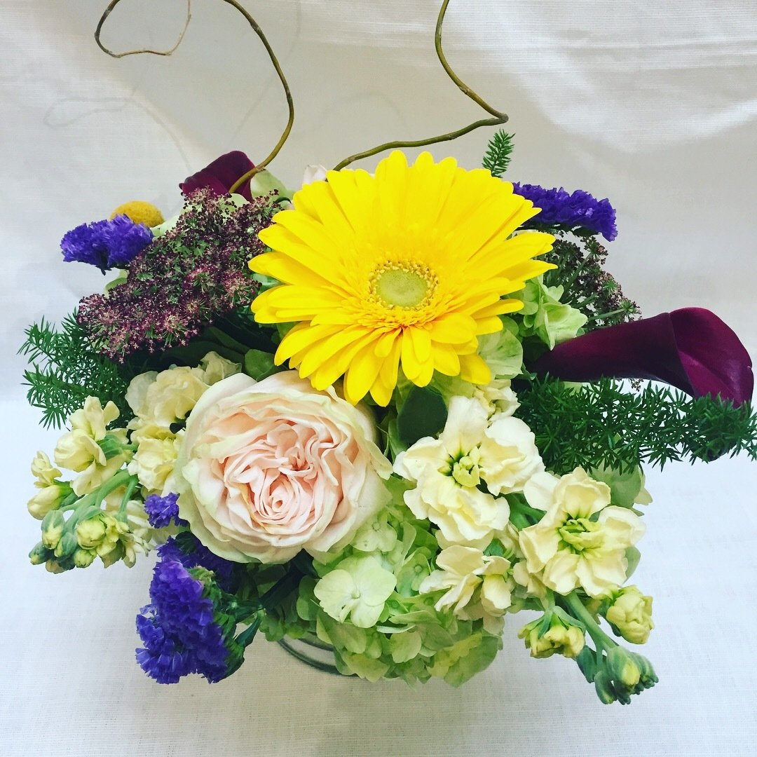 Whoomp by Twigs Florist