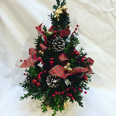 Traditional Boxwood Tree by Twigs Florist
