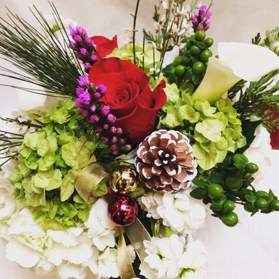 Designer's Choice Winter by Twigs Florist