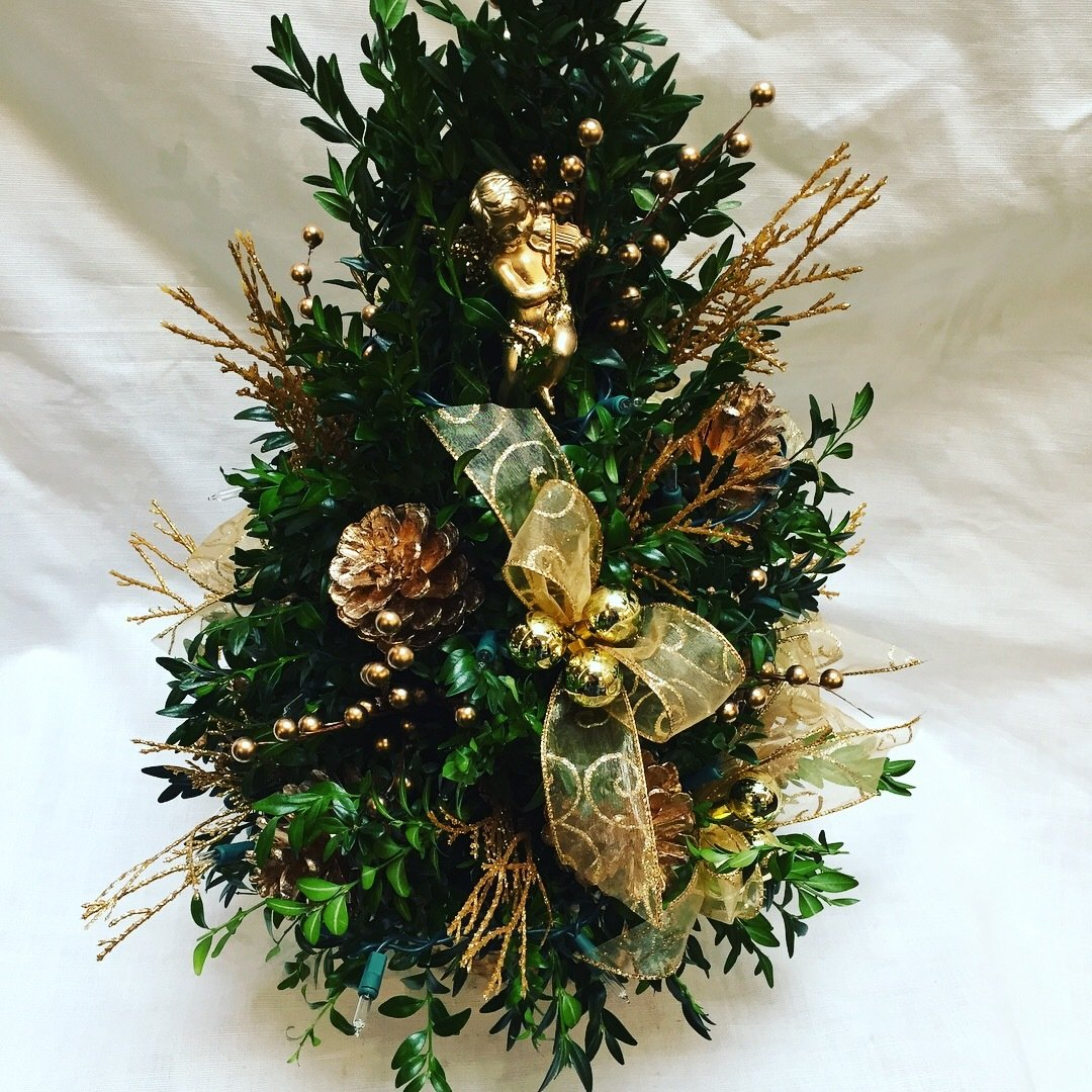 Gold Boxwood Tree by Twigs Florist