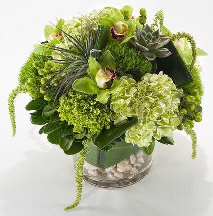 Green Machine by Twigs Florist