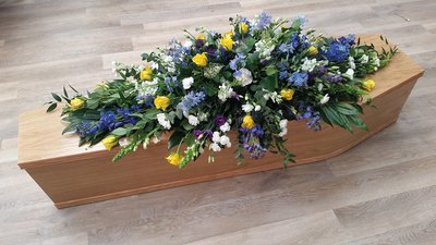 Blue And Yellow Coffin Spray