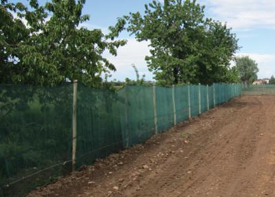 Spiranet Perimetro (rotolo da 100 mt x 2h)