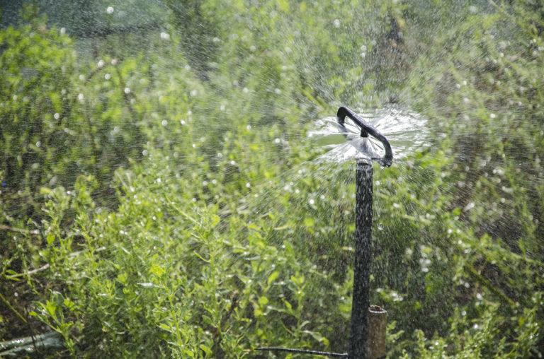 Irrigatore a vaporizzazione