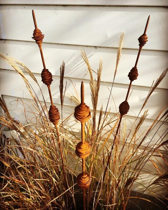 Rusty Kakano (seed pods) -  1500mm