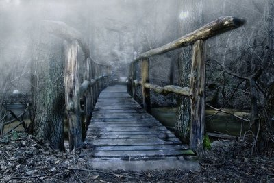 Facing The Bridge