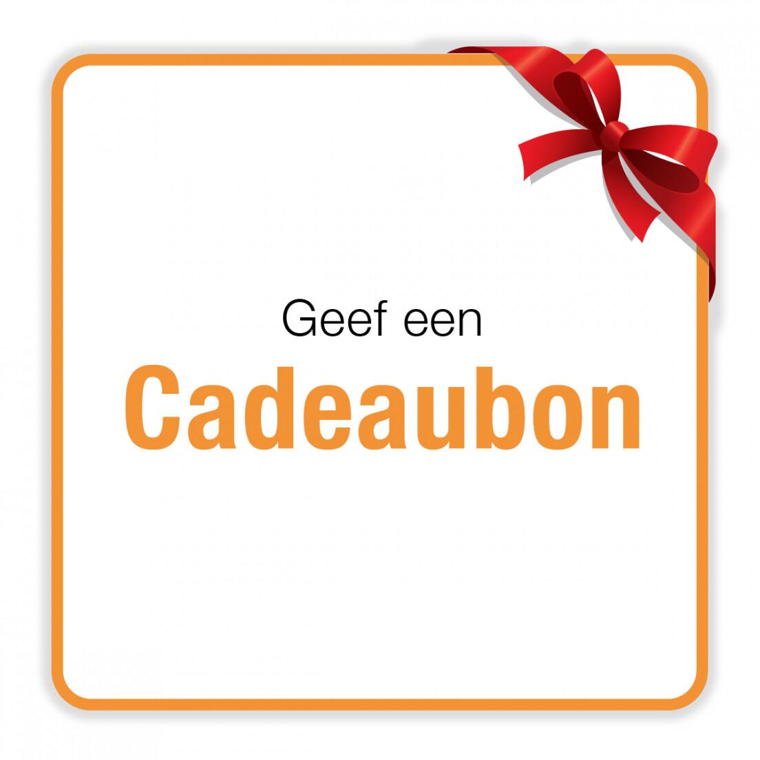 CADEAU-BON HondenSUP les of Workshop