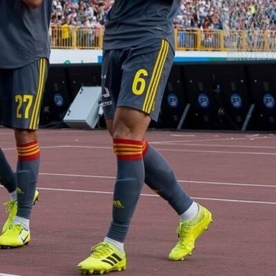 ФУТБОЛЬНЫЕ ГЕТРЫ Adidas ADISOCKS