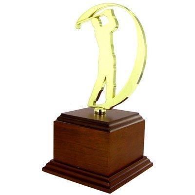 R2010-M-USAMT Trophy