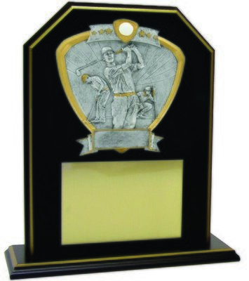 TP28-912GF-1-USAMT Trophy