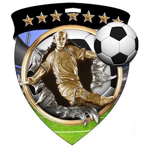 SAY Male Soccer Player and Ball Medal