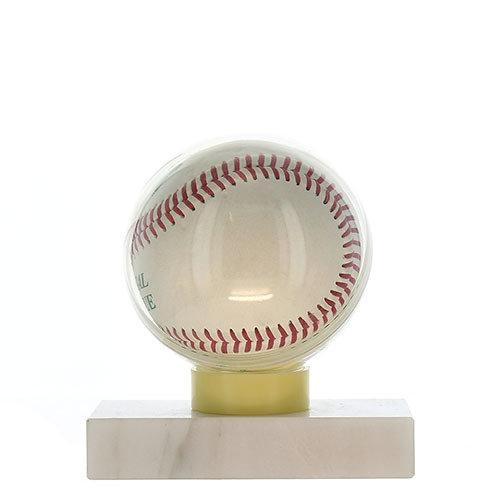 Baseball Ball Case