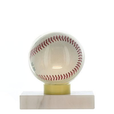 Baseball Ball Case