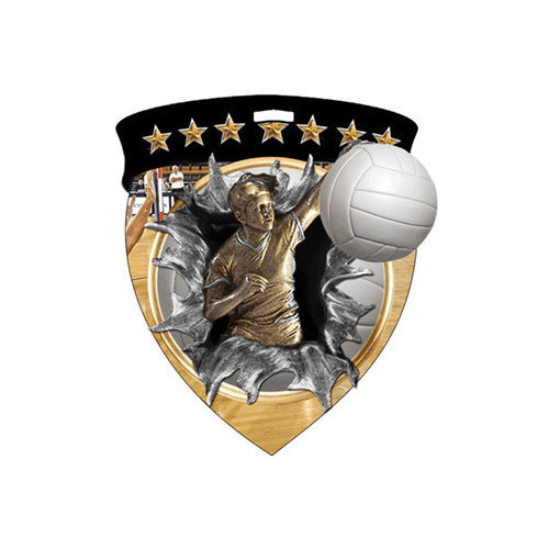 """3"""" Volleyball Shield Medal *Limited Quantities*"""