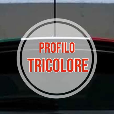 Profilo Tricolore alettone 500 ABARTH