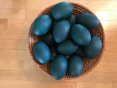 Emu Eggs, Blown Out
