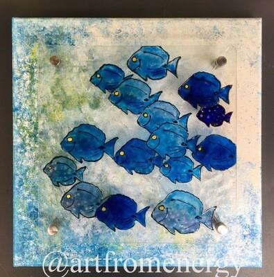 Wild Blue Tang