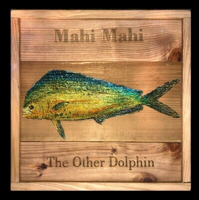 The Other Dolphin