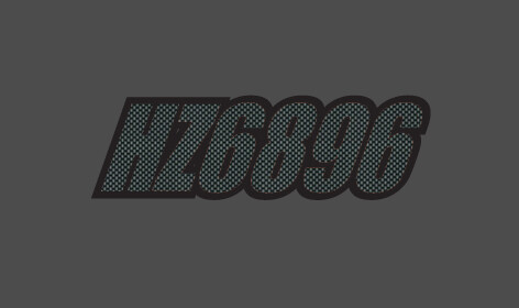 2015 Skidoo Renegade - Sled Numbers