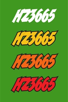 2001 Arctic Cat ZR 600 - Sled Numbers
