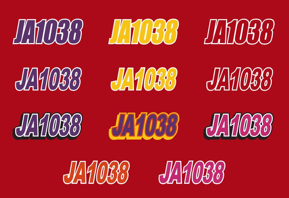 1995 Skidoo Formula Z - Sled Numbers