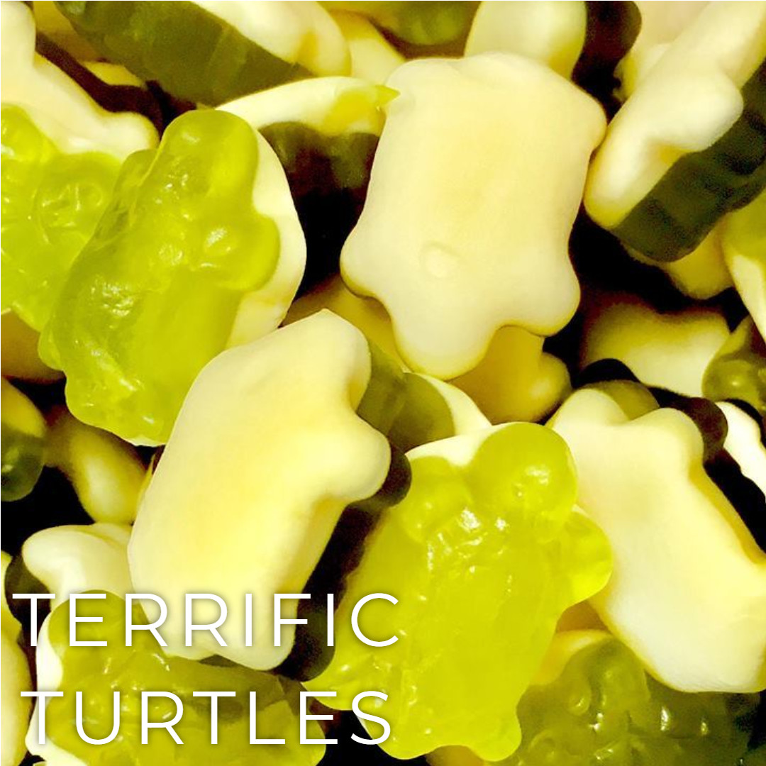 Terrific Turtles