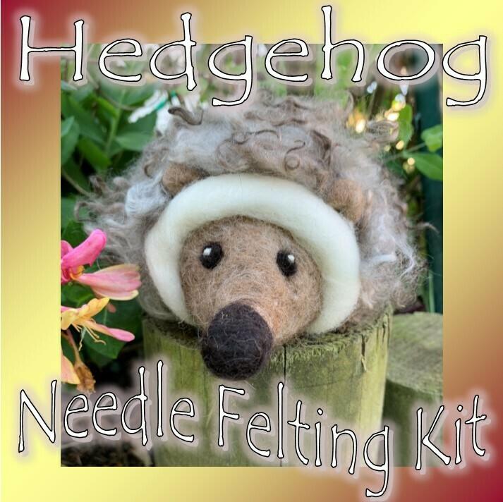 Hedgehog Needle Felting Kit