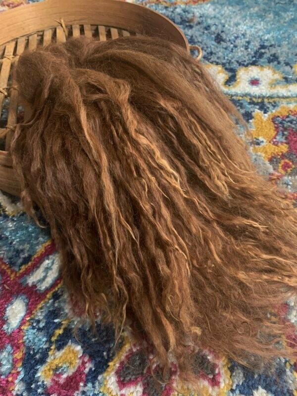 Suri Alpaca Locks, 11 Inches, Medium Brown, Margo