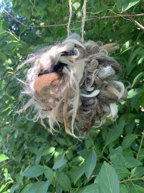 Alpaca Bird Nesting Ball
