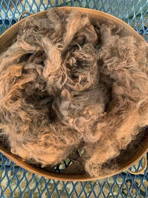 Suri Alpaca Fiber, 10 Inches, Light Fawn,