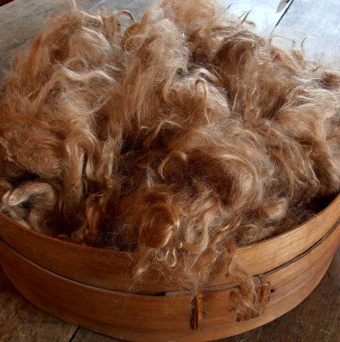 Suri Alpaca Fiber, 4 Inches, Medium Fawn,