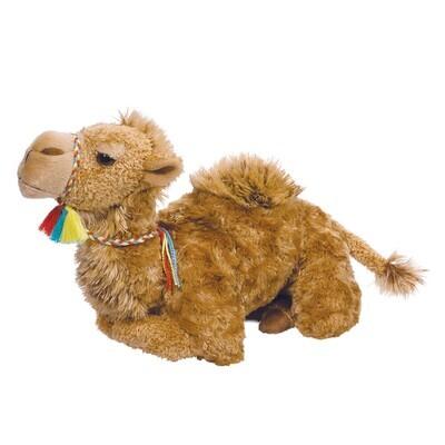 Spitz Camel