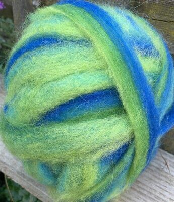 Alpaca Wool Roving - Chameleon