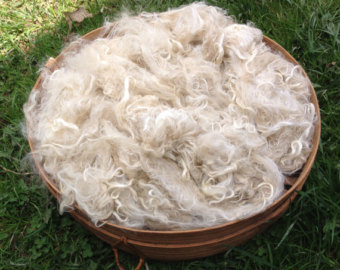 Suri Alpaca Fiber, 4  Inches, White,