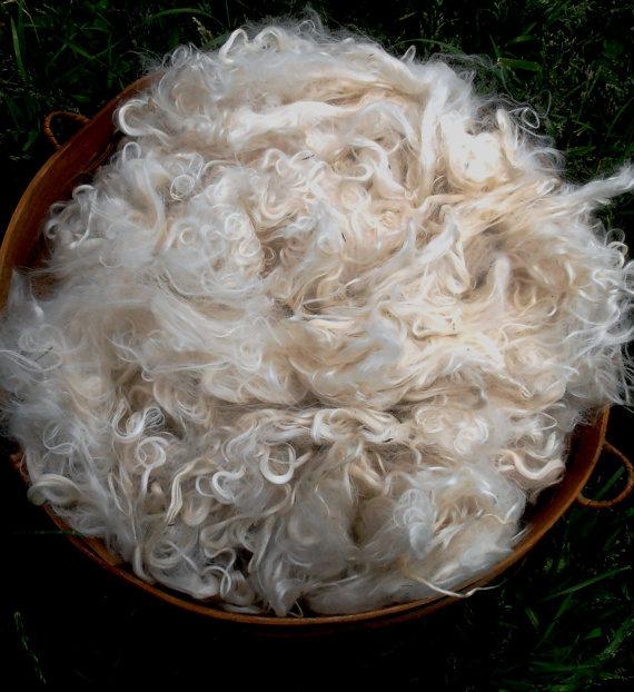 Suri Alpaca Fiber, 5 Inches, White,