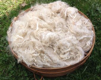 Suri Alpaca Fiber, 4  Inches, White,