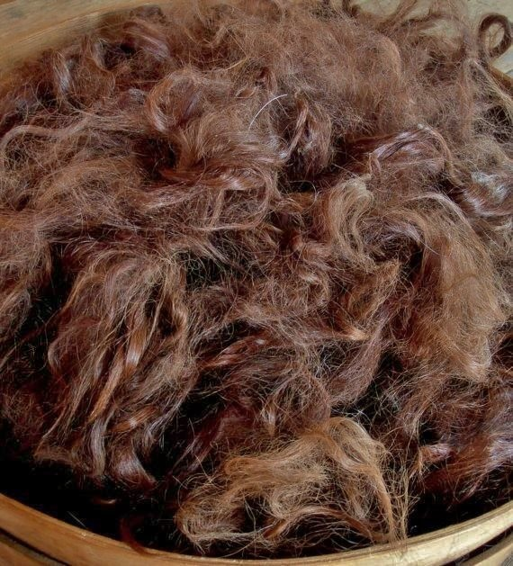 Suri Alpaca Fiber, 6 Inches, Medium Brown,